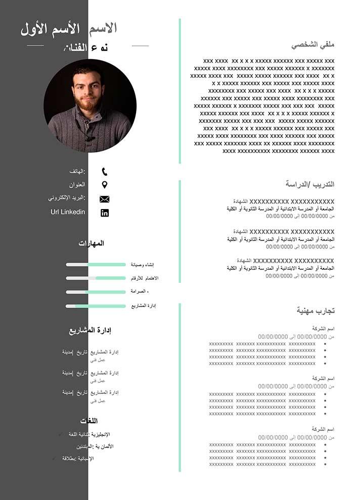 cv-template-artist